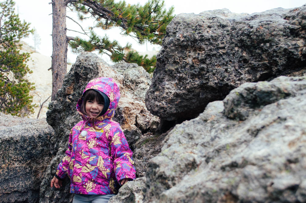 montana lune idyll guide blog yellowstone (38 of 121).jpg