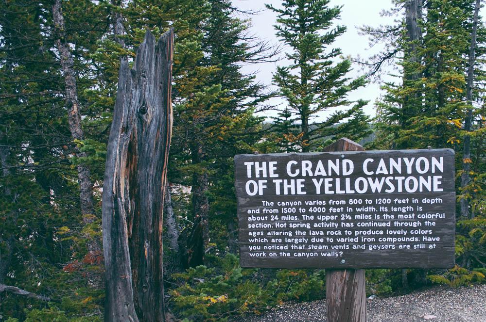 montana lune idyll guide blog yellowstone (40 of 121).jpg