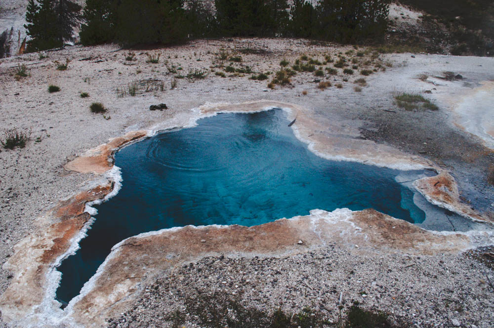 montana lune idyll guide blog yellowstone (70 of 121).jpg