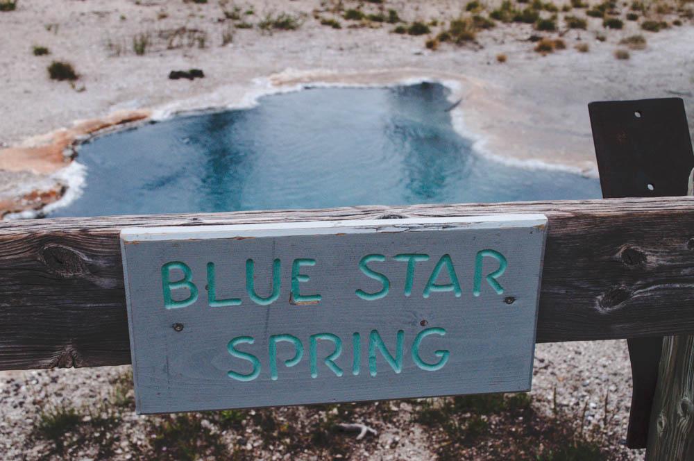 montana lune idyll guide blog yellowstone (71 of 121).jpg