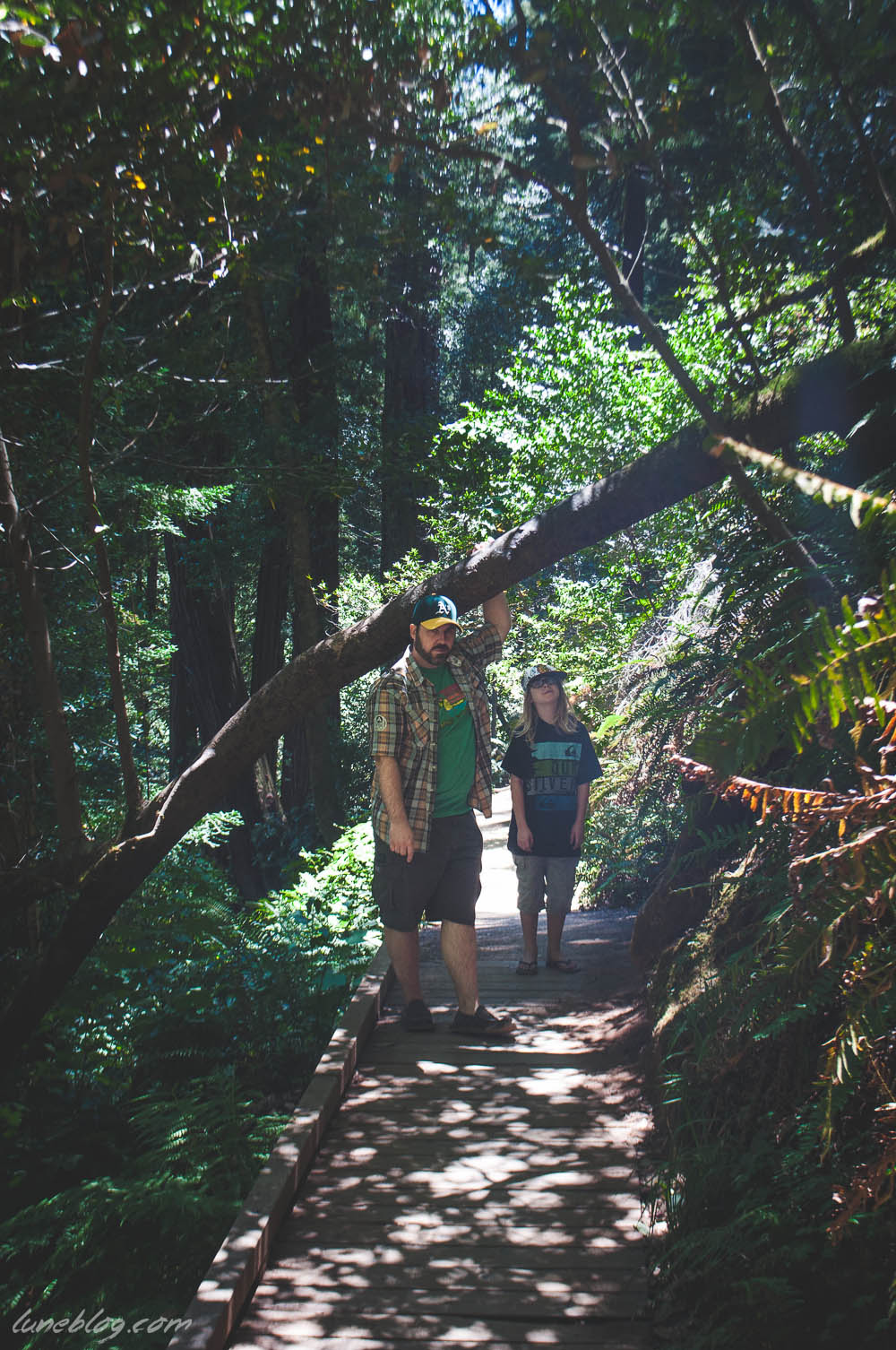 muir woods stinson beach lune travels blog (24 of 49).jpg