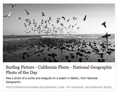 Work feature in National Geographic. Click here