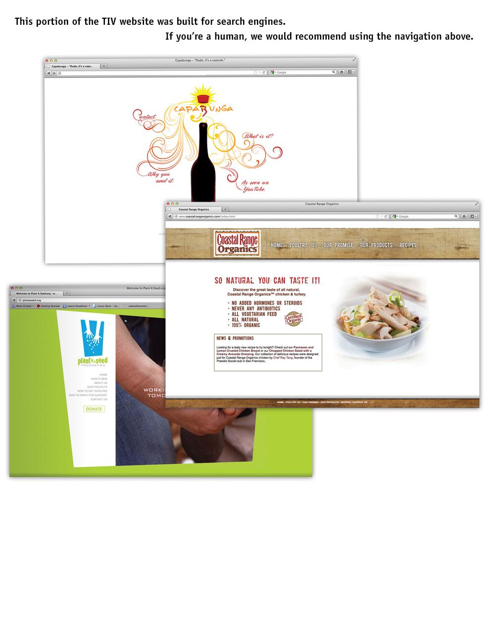 website_design.jpg