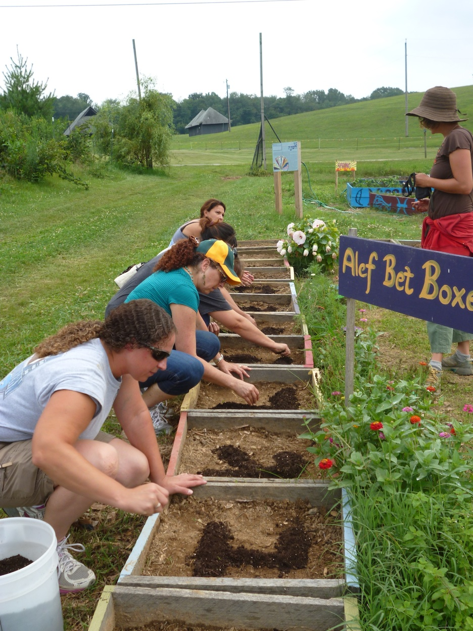 Click photo to download. Caption: Participants at the Pearlstone Center's 2nd Annual Early Childhood Conference in Jewish, outdoor education get their hands dirty, planting micro-greens in the shape of the Hebrew alphabet. The center is located near Baltimore. Credit: Pearlstone Center.