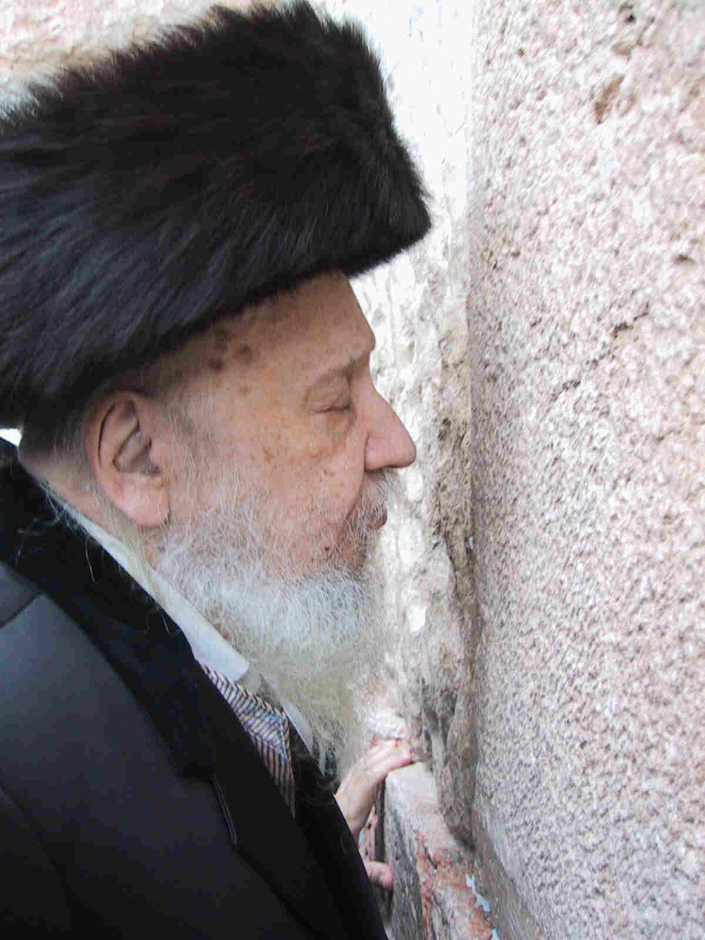 Click photo to download. Caption: Rabbi Levi Yitzhak Horowitz, known as the Bostoner Rebbe, at the Western Wall. Credit: Heshel/Wikimedia Commons.