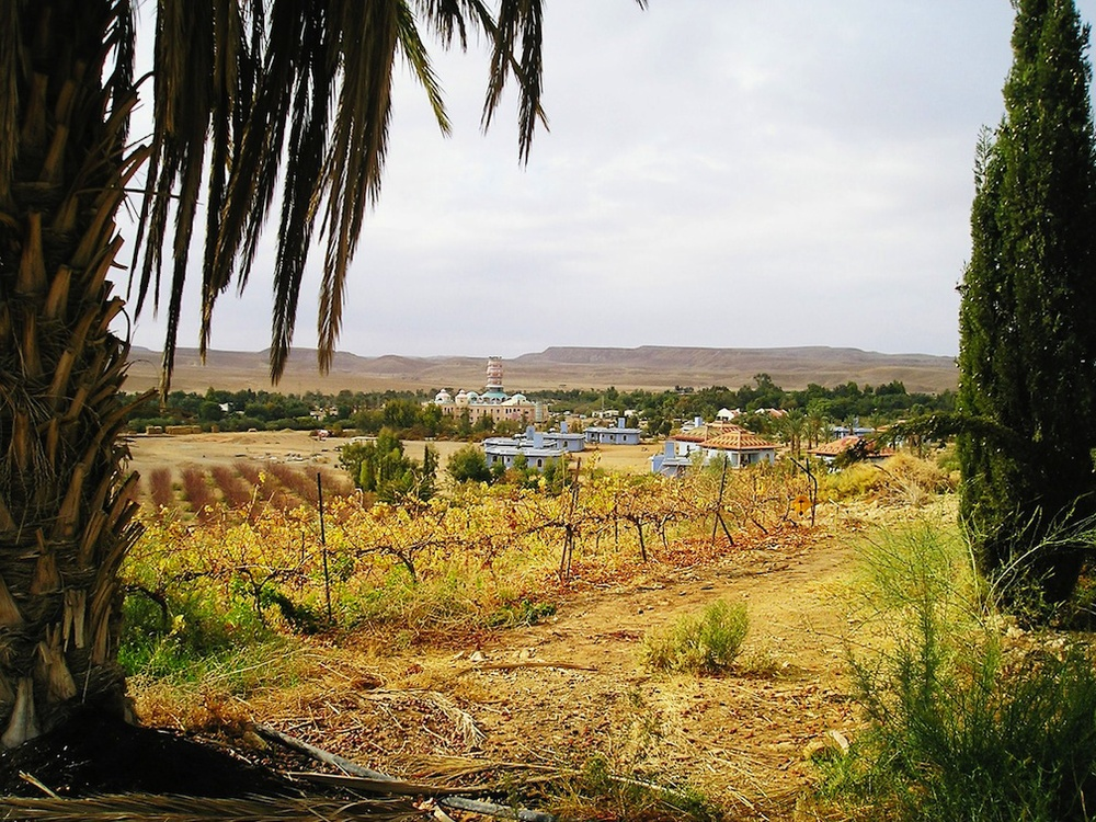 Click photo to download. Caption: Kibbutz Neot Semander in the Negev. Credit: JanuManu/Wikimedia Commons.
