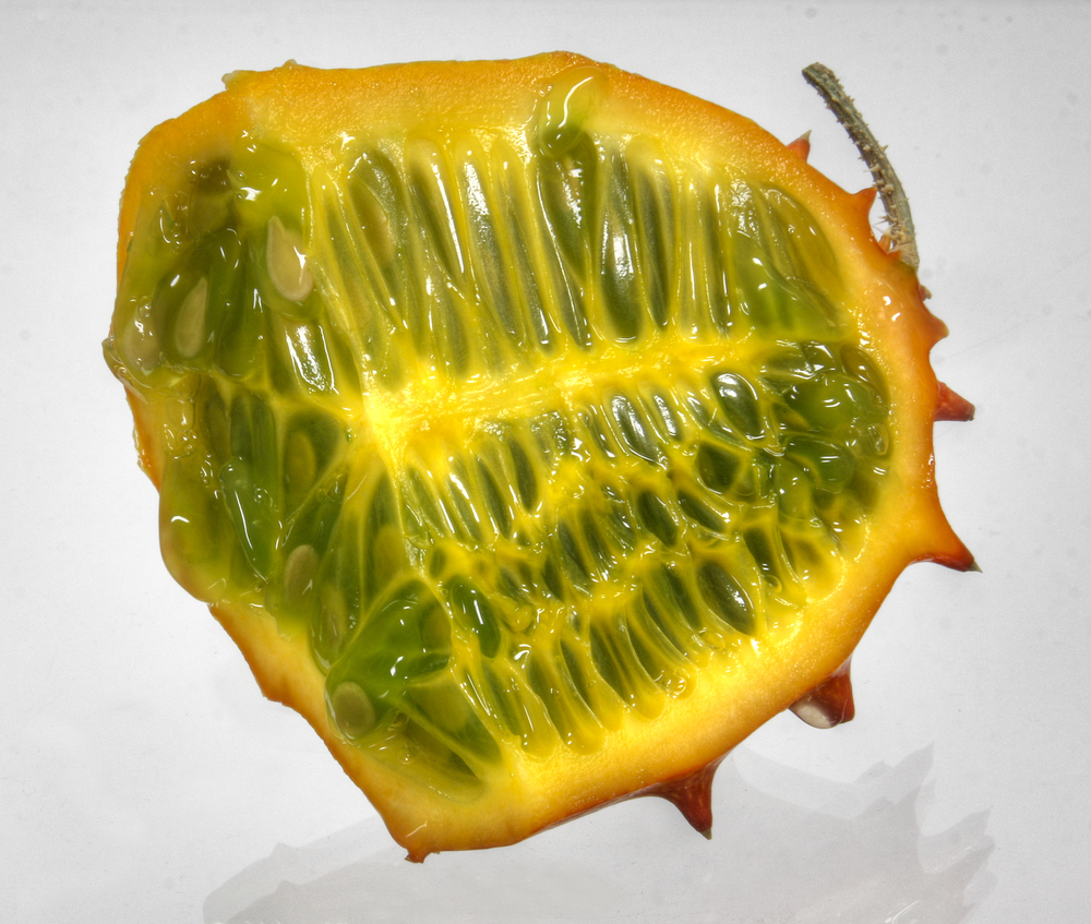 Click photo to download. Caption: The Kiwano. Credit: Elke Wetzig via Wikimedia Commons.
