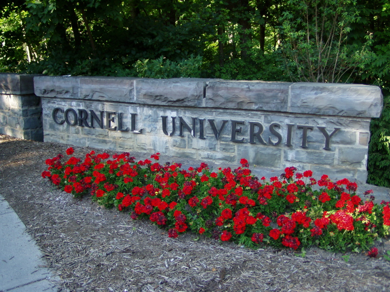 Cornell University is collaborating with Israel's Technion Institute of Technology for a degree program to educate technology professionals for a career in media. Credit: Wikimedia Commons.