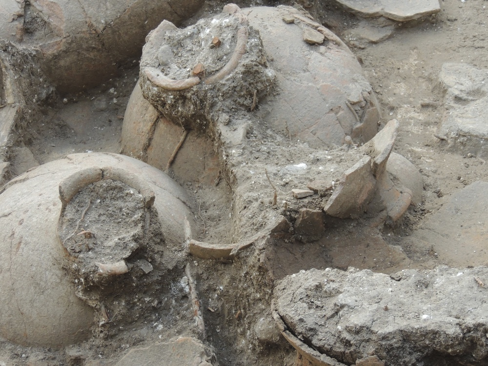 "Click photo to download. Caption: The ancient wine jugs unearthed at Tel Kabri in Israel. Archeologists  describe the discovery as the ""oldest and largest palatial wine cellar"" ever found in the Near East. Credit: Brandeis University."