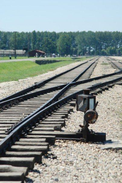 Millions of Jews were transported via trains to death camps such as Auschwitz during the Holocaust. Most of them were killed in gas chambers. Credit: Wikimedia Commons.