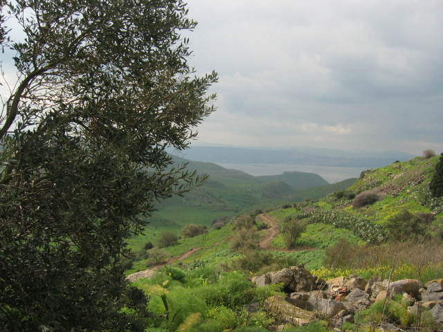 The Golan Heights in Israel. Across the border in Syria, forty Filipino UN peacekeeping forces escaped after being attacked by rebels. Credit: Wikimedia Commons.
