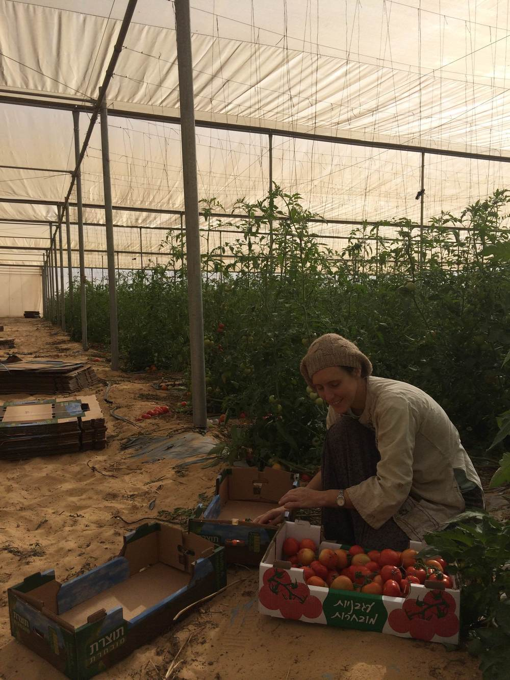 Click photo to download. Caption:  Nava Uner works in Bnei Netzarim, one of three Halutza (pioneer) communities in the Young Farmers Incubation Project. Credit: Provided photo.