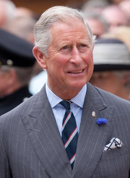 Prince Charles. Credit: Dan Marsh via Wikimedia Commons.