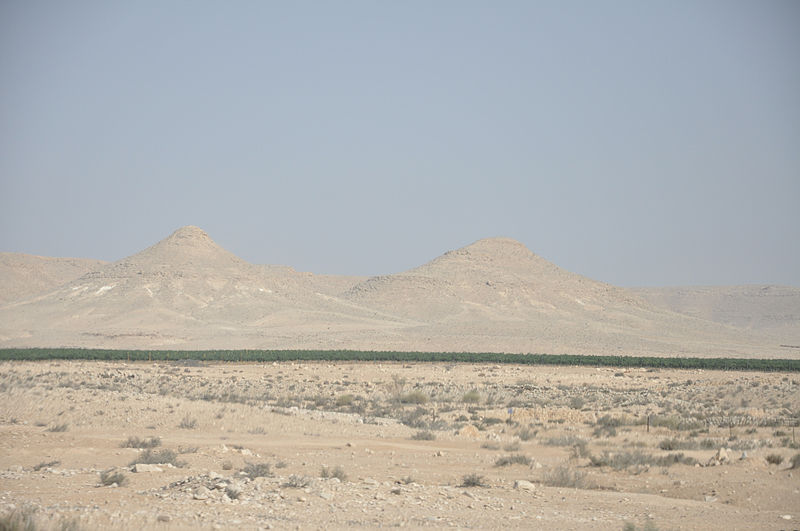 The Negev Desert. Credit: Wikimedia Commons.