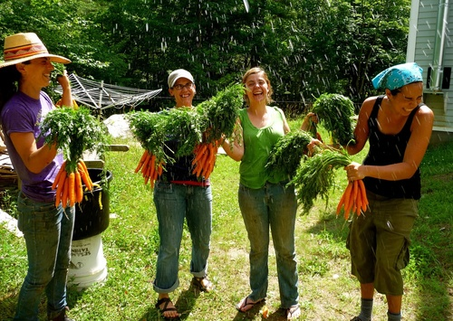 Click photo to download. Caption: Staff and participants of the Adamah Jewish farming program wash the harvest in Falls Village, Conn., in 2012. Credit: Courtesy of Hazon.