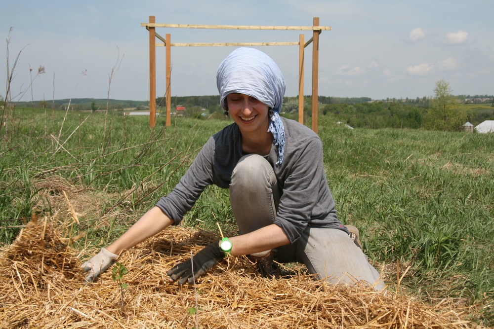 "Click photo to download. Caption: Tamar Yunger—acting executive director of Bela Farm, a Jewish farm in Hillsburgh, Ontario, Canada—works at the farm in front of the scaffold for what has become a structure called ""Dinah's Tent."" Sustainable agriculture is gaining increased prominence in the Jewish community thanks to the growth of the Jewish Food Movement. Credit: Courtesy of Bela Farm."