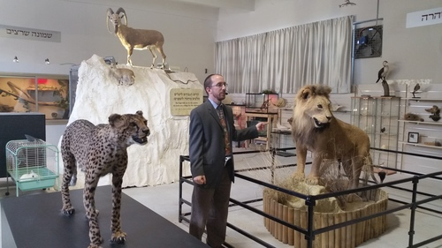 Click photo to download. Caption: Rabbi Natan Slifkin, founder of the Biblical Museum of Natural History in Beit Shemesh, Israel, speaks at the museum's opening on Feb. 23. Credit: Orit Arfa.