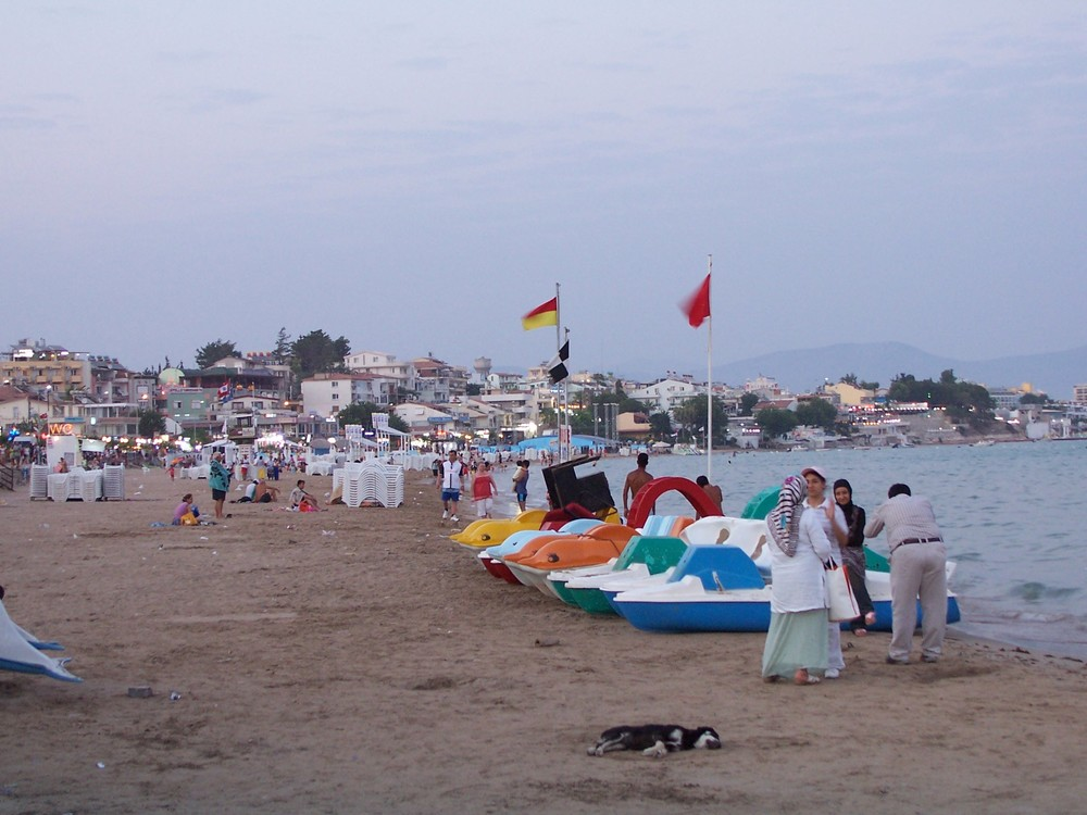 A beach in Altinkum, a resort town in Turkey. Credit: Steven Lek via Wikimedia Commons.