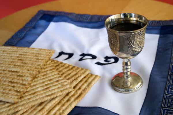 420 lone IDF soldiers attended a special Passover Seder on Friday.