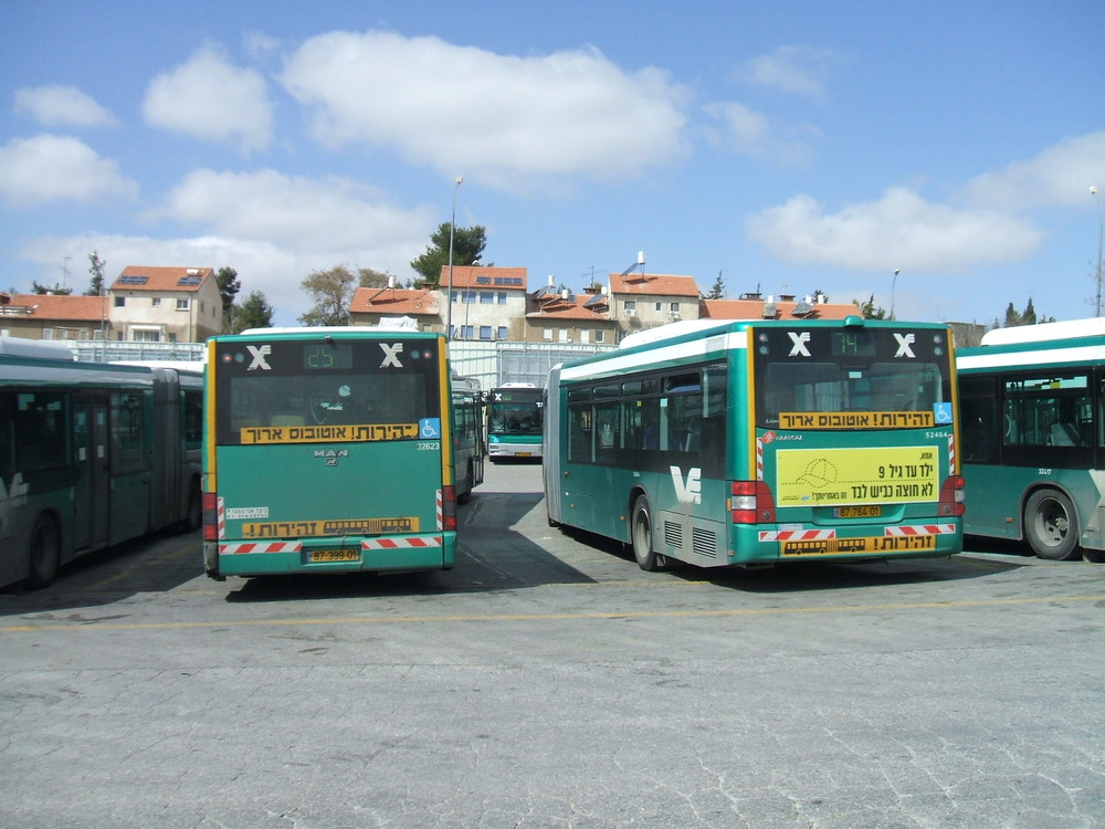 Egged buses in Israel. Credit: Wikimedia Commons.