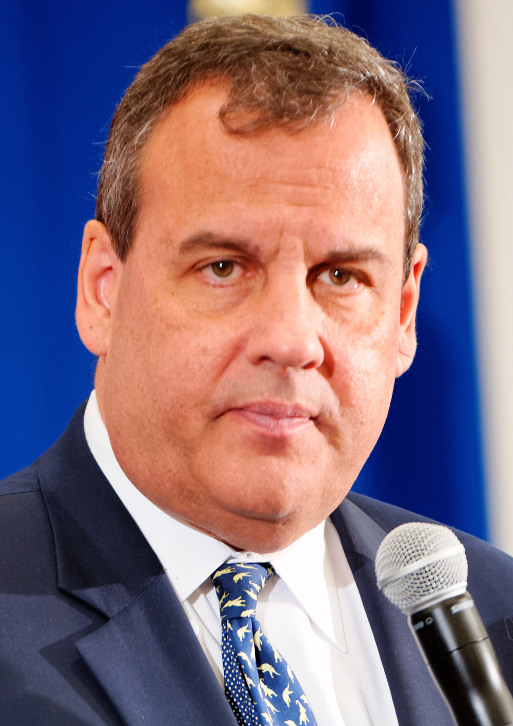 Gov. Chris Christie. Credit: Michael Vadon via Wikimedia Commons.
