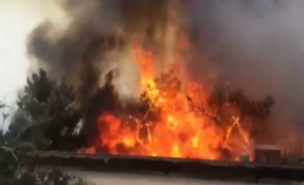 The wildfire in the hills near Jerusalem. Credit: Israel Hayom video.