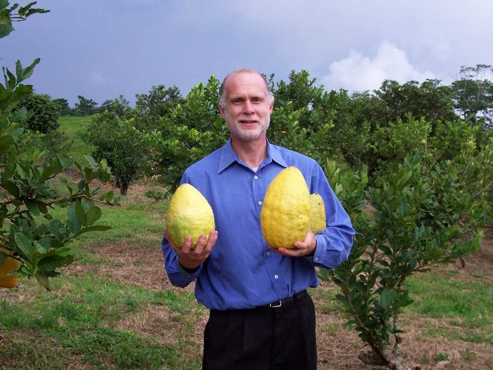 Click photo to download. Caption: Darrell Zaslow poses with massive etrog fruits that he grew. Credit: Courtesy Darrell Zaslow.