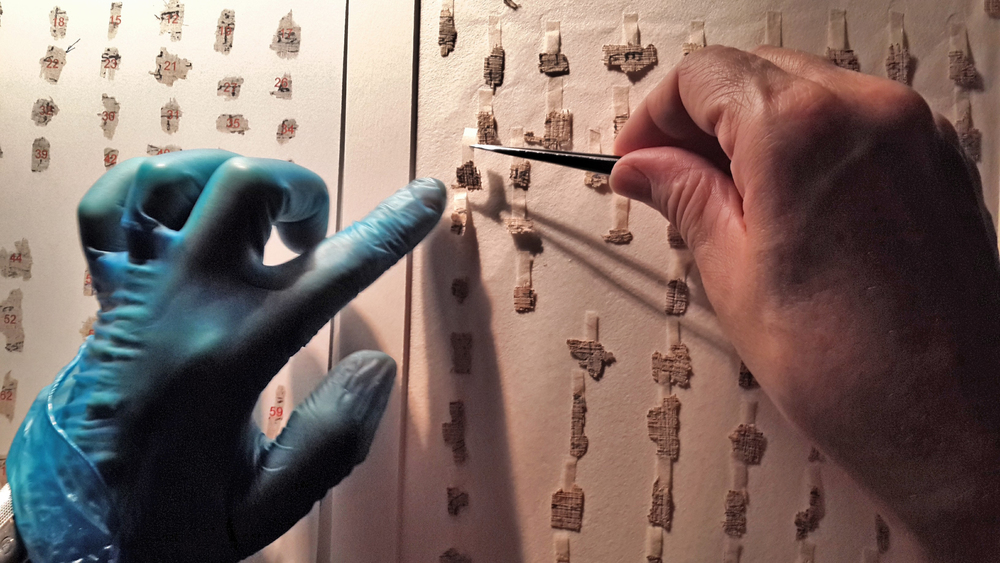 Israeli researchers will virtually piece together thousands of Dead Sea Scrolls fragments in a new German-funded digitization project. Credit: Shai Halevi/Israel Antiquities Authority.