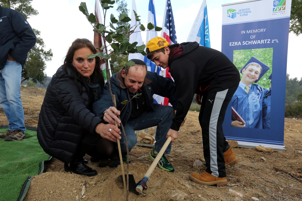 Click photo to download. Caption: From left to right, Ezra Schwartz's mother Ruth, father Ari, and brother Hillel plant a tree in his memory on Dec. 30, 2015, in Israel. Schwartz, an American yeshiva student who was spending his gap year between high school and college in Israel, was killed in a Palestinian terror attack in November 2015. Credit: Courtesy Jewish National Fund.