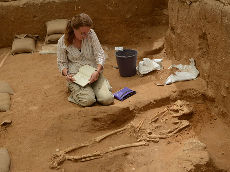 A member of the physical anthropology team examines a 10th-9th century BC burial during the excavation of the Philistine cemetery by the Leon Levy Expedition to Ashkelon. Credit: Melissa Aja/Leon Levy Expedition.