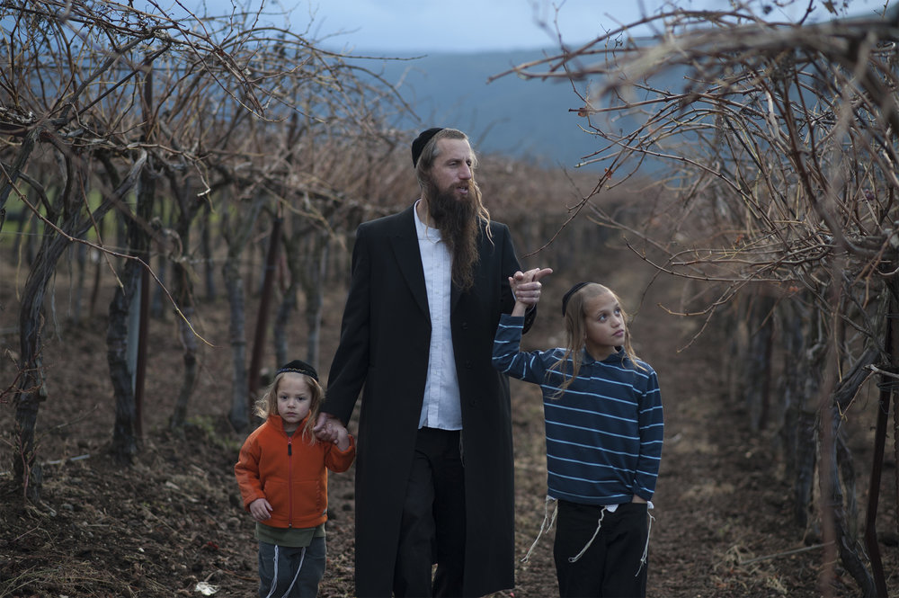 Israeli farmer Ira Zimerman with his children in his vineyard which harvests grapes to serve a large area winery. Credit: The Shmitah Fund.