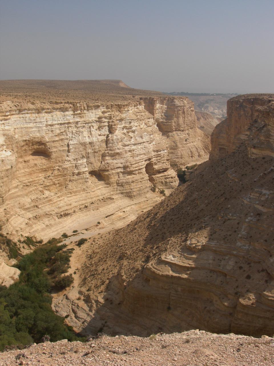 Ein Avdat, Israel. Credit:Roger Braunstein via Flickr.