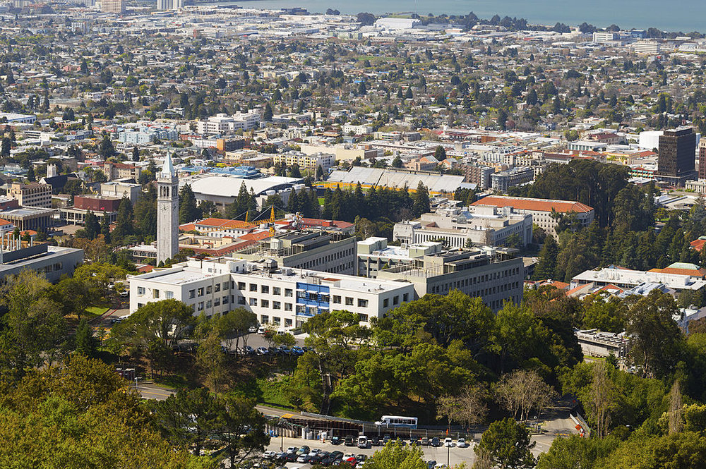 The campus of the University of California, Berkeley. Credit: Getty Images.