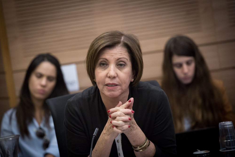 Meretz party leader Member of Knesset Zehava Gal-On speaks Nov. 28 at a Knesset Finance Committee meeting regarding compensation for those who suffered from the recent fires in Israel. Gal-On accused Prime Minister Benjamin Netanyahu of encouraging Palestinian arson attacks. Credit: Miriam Alster/Flash90.