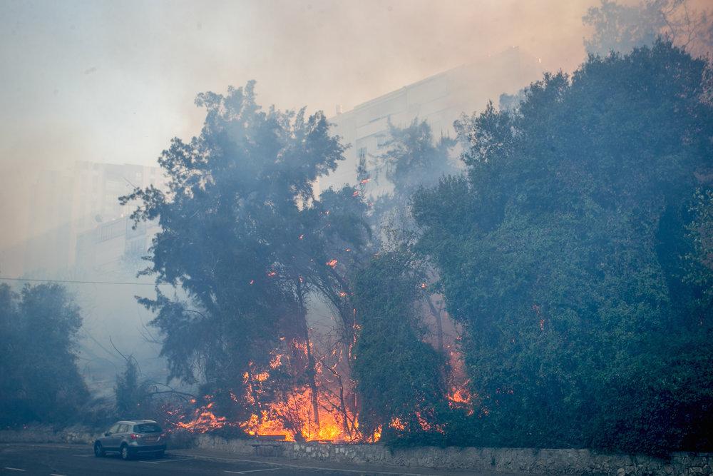 A fire rages Nov. 24 in Haifa. Credit: Meir Vaknin/Flash90.