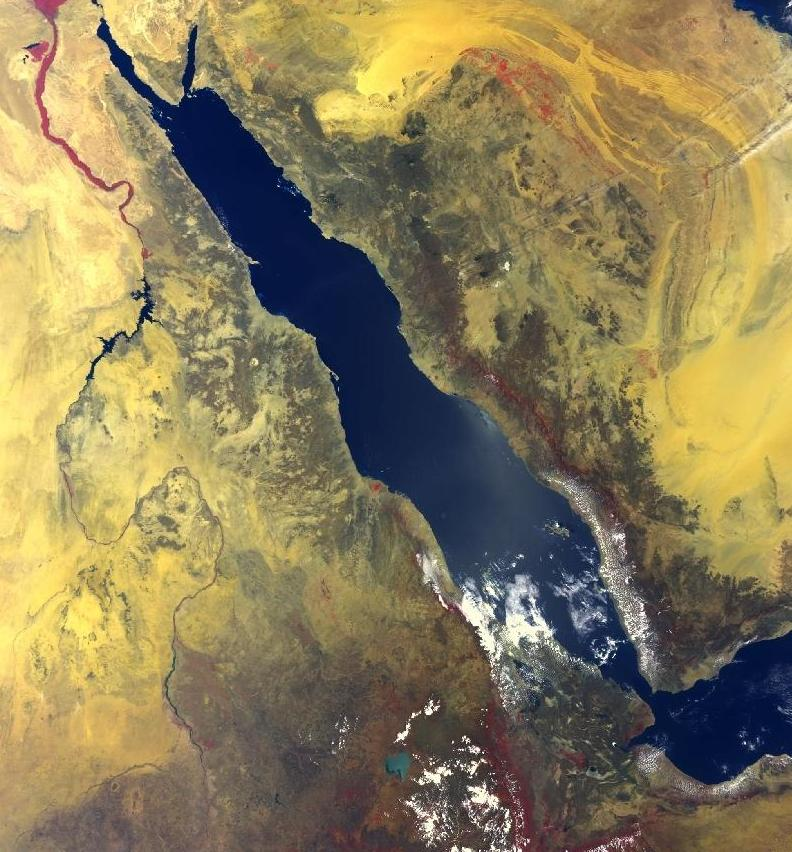 A satellite image of the Red Sea. Credit: NASA.