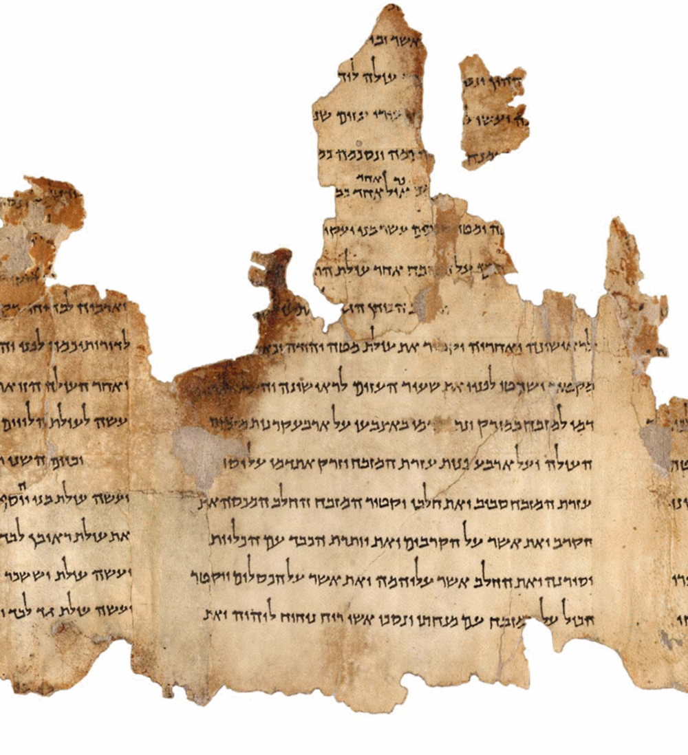 Part of the Temple Scroll, one of the Dead Sea Scrolls. Credit:Israel Museum.