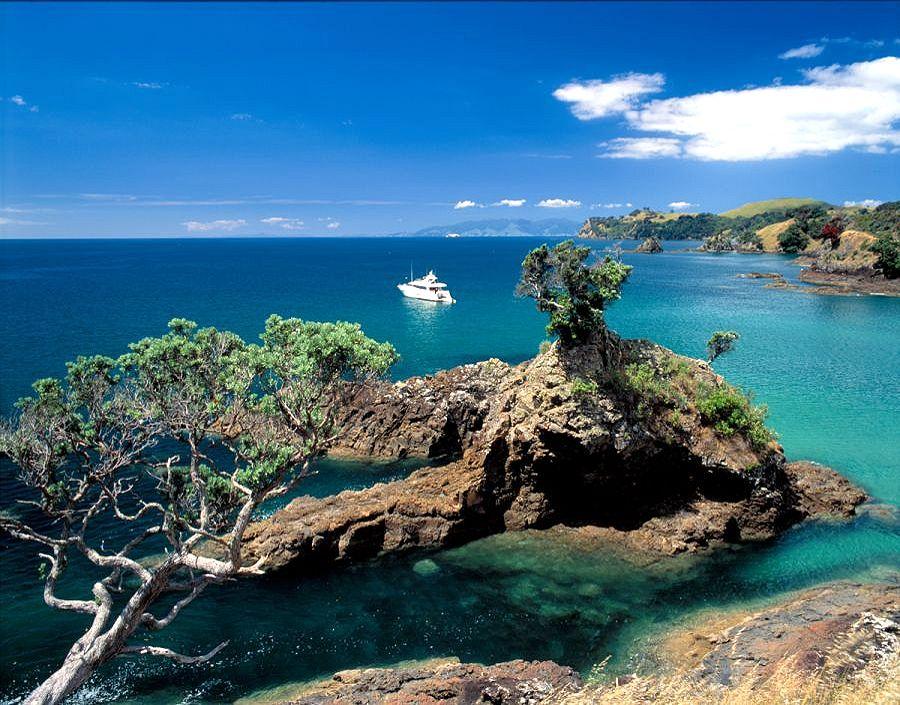 cactusbay_island.jpg