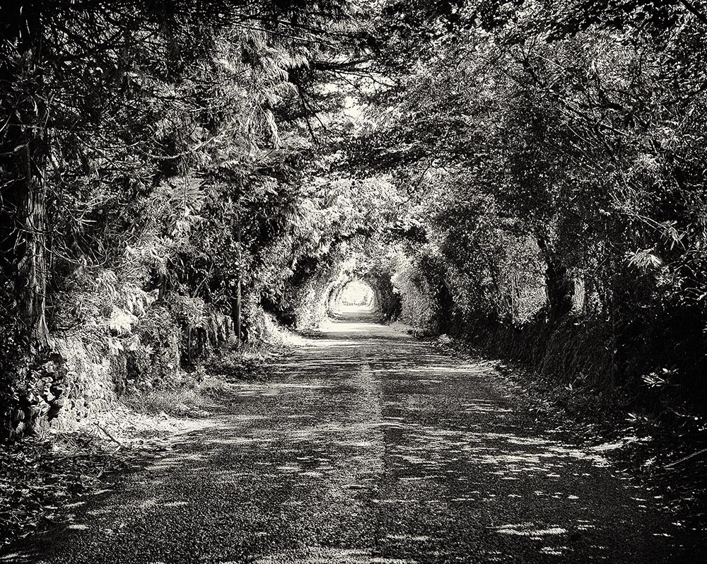 Covered Roadway near Clogheen