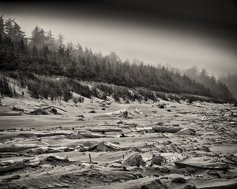 2016_Haida_North Beach_2.jpg