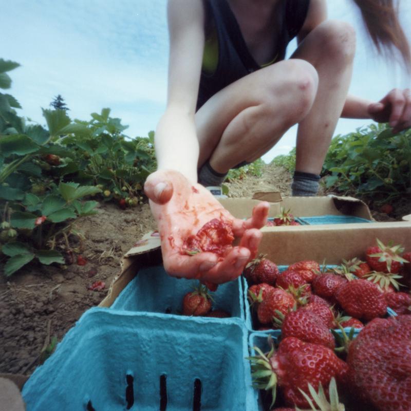 Strawberry Violence