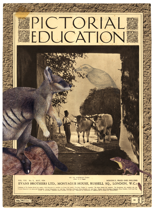 Gracia Haby & Louise Jennison,  Modifications in Pictorial education (II) , 2012, artists' book
