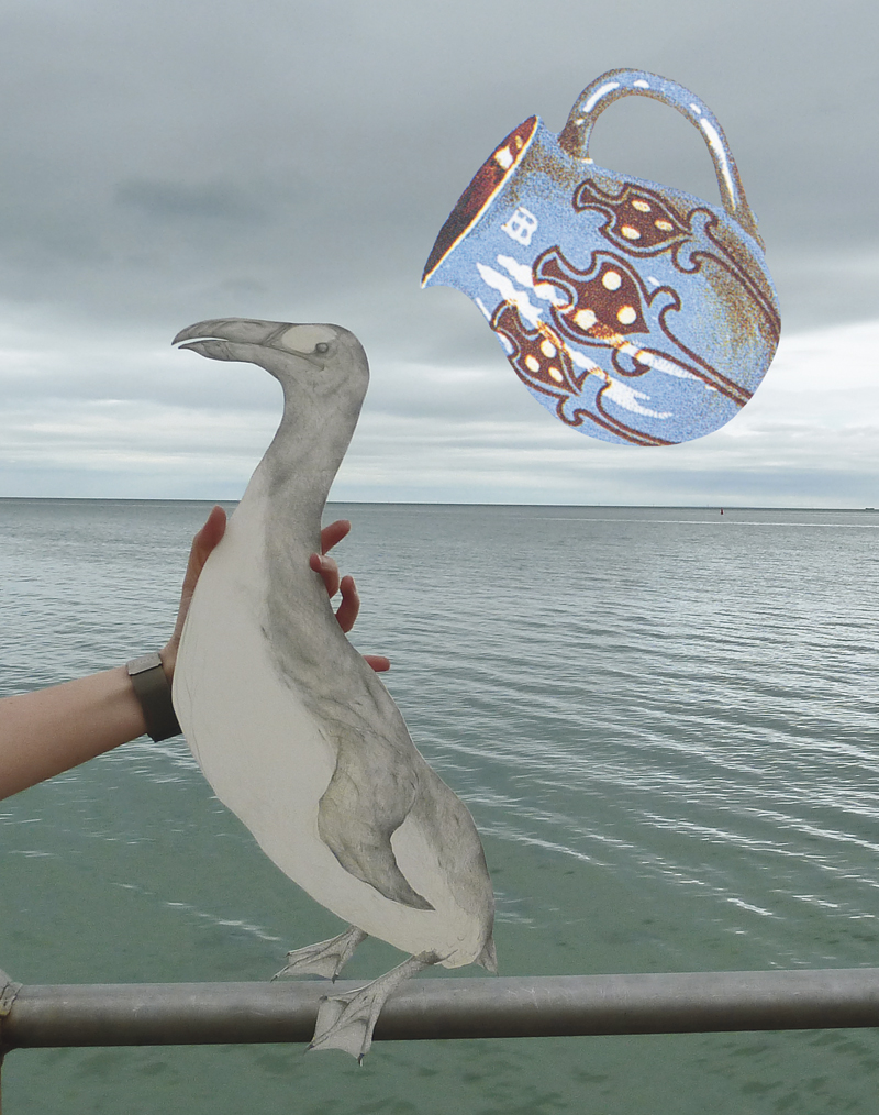 Louise Jennison,  Aquarius: The Water Carrier , 2010, photograph of a drawing of a Great auk especially for Blanket magazine