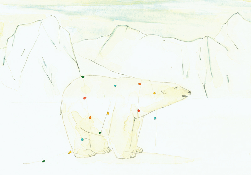 LANDSCAPE          GREETING CARD     A polar bear with lights in Antarctica