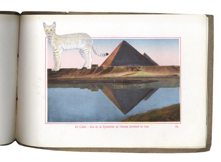 GraciaHaby_Egypt05.jpg