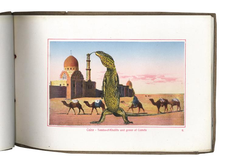 GraciaHaby_Egypt03.jpg