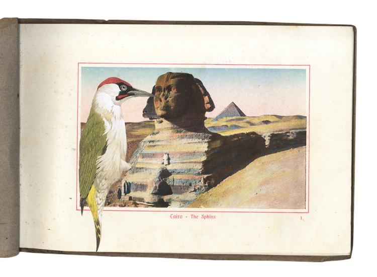 GraciaHaby_Egypt13.jpg