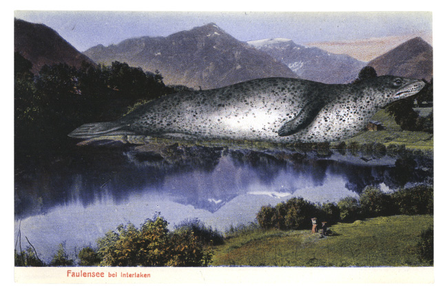 graciahaby_postcardcollage06.jpg
