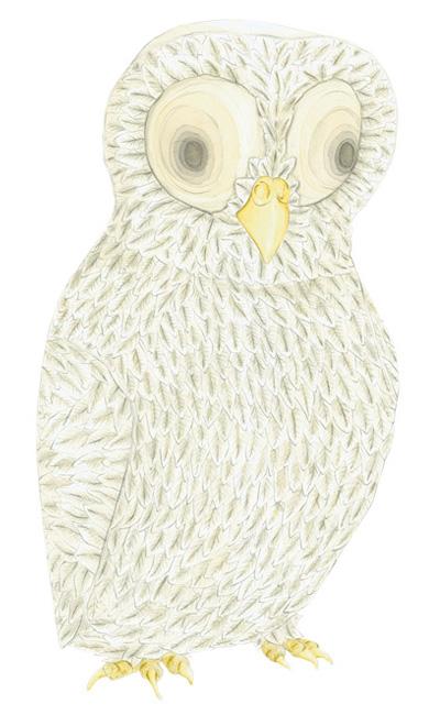 owl_louise_jennison01.jpg