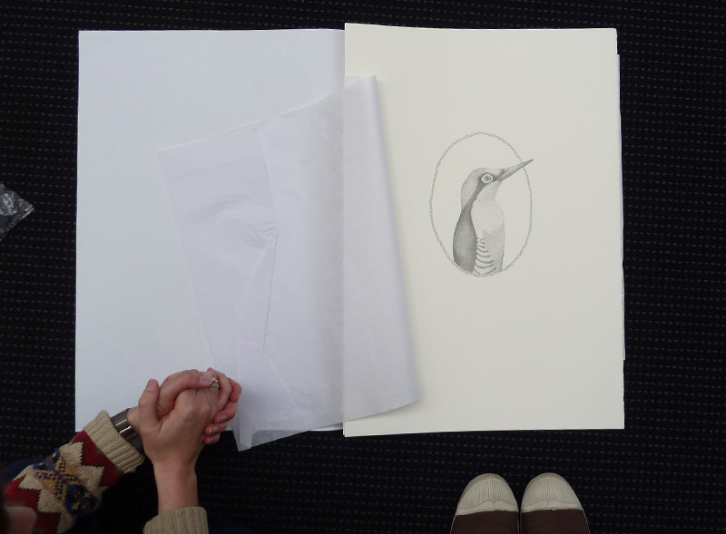 Louise Jennison, A Year of Southern Hemisphere Birds, 2013, artists' book